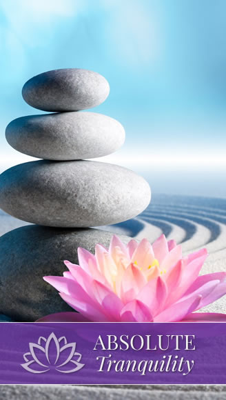 absolute tranquility dublin holistic services